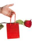 Mano que da el actual rectángulo y una rosa Imagen de archivo libre de regalías