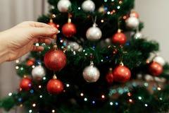 Mano que lleva a cabo el cierre rojo del ornamento de la bola para arriba que adorna el tre de la Navidad Imagenes de archivo