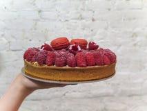 Mano que presenta una tarta de frambuesa con los macarrones Imagen de archivo
