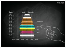 Mano que señala los gráficos 2016-2020 de las pirámides de población con la generación 4 Imagenes de archivo