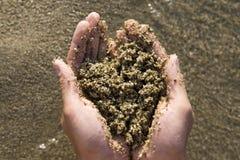 Mano que sostiene arena de mar en forma de corazón Imagen de archivo