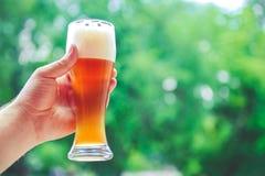 Mano que sostiene el vidrio de cerveza Imágenes de archivo libres de regalías