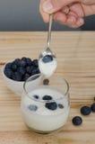 Mano que sostiene la cuchara en el yogur con los arándanos Imagen de archivo libre de regalías