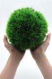 Mano que sostiene la hierba verde del globo imagen de archivo