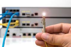 mano que sostiene los cables ópticos de la fibra con los conectores imagen de archivo