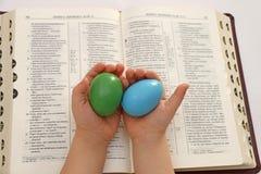 Mano que sostiene los pequeños huevos del bebé Imágenes de archivo libres de regalías
