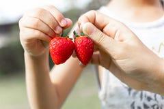 mano que sostiene una fresa fresca foto de archivo libre de regalías