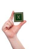 Mano que sostiene una viruta de la CPU del ordenador Imagen de archivo
