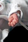 Mano recién nacida del bebé Fotografía de archivo libre de regalías
