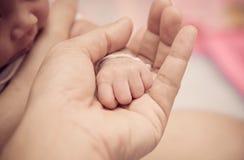 Mano recién nacida del bebé en la palma de la mamá Foto de archivo