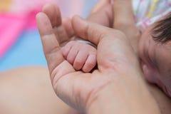 Mano recién nacida del bebé en la palma de la mamá Fotos de archivo