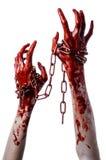 Mano sangrienta que sostiene la cadena, cadena sangrienta, tema de Halloween, fondo blanco, aislado Imagen de archivo libre de regalías