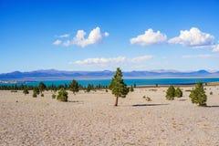 Mano sjö Kalifornien, USA Arkivbild