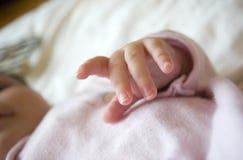 Mano suave del bebé Imagen de archivo libre de regalías