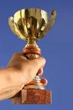 Mano, trofeo y cielo imagen de archivo libre de regalías