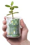Mano, vetro, euro, germoglio Fotografia Stock