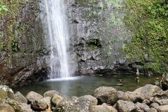 Manoa понижается бассейн Стоковое Изображение RF