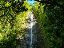 Manoa baja Oahu Hawaii imagen de archivo