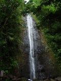 Manoa-Fälle versteckt im Dschungel nahe Honolulu, Oahu, Hawaii stockbild