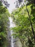 Manoa fällt auf die Insel von Oahu stockbild