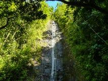 Manoa faller Oahu Hawaii Fotografering för Bildbyråer