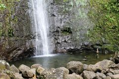 Manoa Falls Pool Royalty Free Stock Image