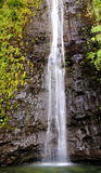 Manoa waterfalls Royalty Free Stock Image
