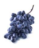 Manojo azul seco diagonal de las uvas aislado en blanco imágenes de archivo libres de regalías