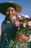 Manojo boliviano de la explotación agrícola de la muchacha de claveles Fotografía de archivo