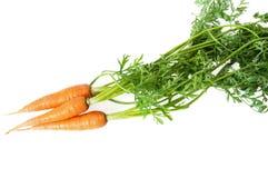 Manojo de aislamiento de las zanahorias en blanco Imagen de archivo