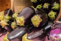 Manojo de berenjenas púrpuras y verdes en una cesta en ella lado del ` s imagenes de archivo