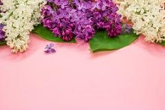 Manojo de blanco, de rosa y de flores p?rpuras de la lila en un fondo rosado coralino Primer Copie el espacio imagenes de archivo