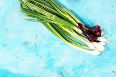 Manojo de cebollas rojas y blancas de la primavera Fotografía de archivo libre de regalías