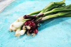 Manojo de cebollas rojas y blancas de la primavera Fotos de archivo libres de regalías