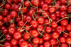 Manojo de cerezas rojas Fondo de la cereza Imágenes de archivo libres de regalías