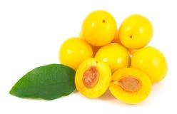 Manojo de ciruelos de cereza amarillos con la hoja Foto de archivo