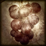 Manojo de estilo del vintage de la uva Fotografía de archivo libre de regalías