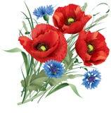 Manojo de flor roja de la amapola, de copos de maíz azules y de clavo del liebre-pie Foto de archivo