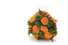 Manojo de flores anaranjado Fotos de archivo libres de regalías