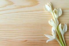 Manojo de flores florecientes de Millingtonia del blanco puro en la tabla de madera fotografía de archivo libre de regalías
