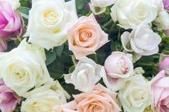 Manojo de fondo de las flores Fotos de archivo