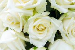 Manojo de fondo de las flores Fotografía de archivo libre de regalías