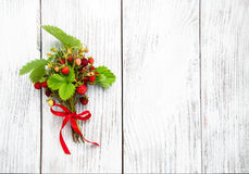 Manojo de fresa salvaje Foto de archivo