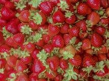 Manojo de fresas rojas frescas foto de archivo libre de regalías