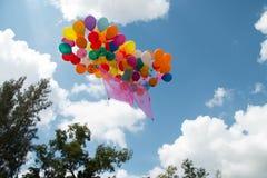Manojo de globo colorido Fotografía de archivo libre de regalías