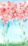 Manojo de la acuarela de flores Fotografía de archivo