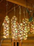 Manojo de la cebolla Fotos de archivo libres de regalías