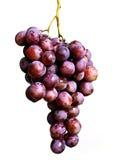 Manojo de la uva Fotografía de archivo libre de regalías