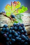 manojo de la uva con la hoja en el registro de madera   Imagen de archivo libre de regalías