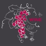 Manojo de la uva para la etiqueta del vino stock de ilustración
